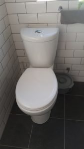 Toilet leak fixed Totton, Hampshire